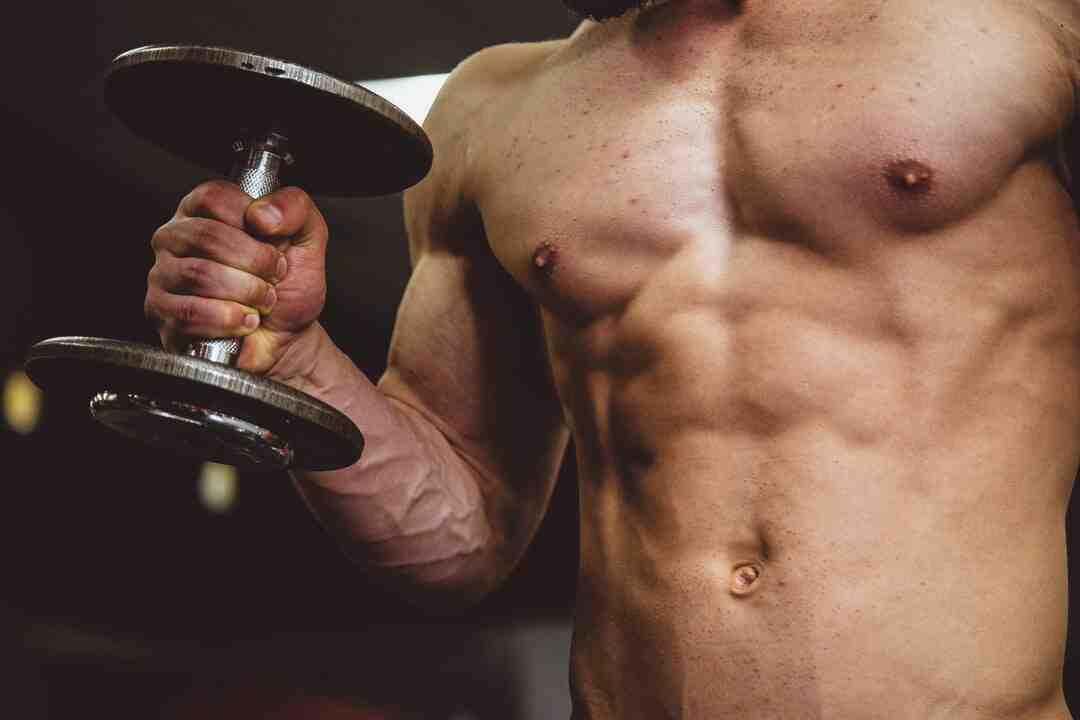 Programme musculation elastique